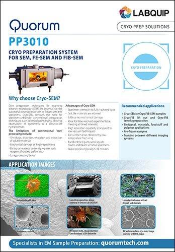 PP3010